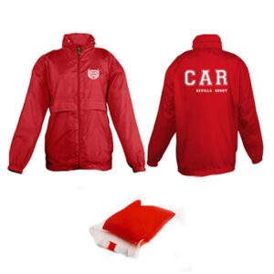 CAR WINTER SALE