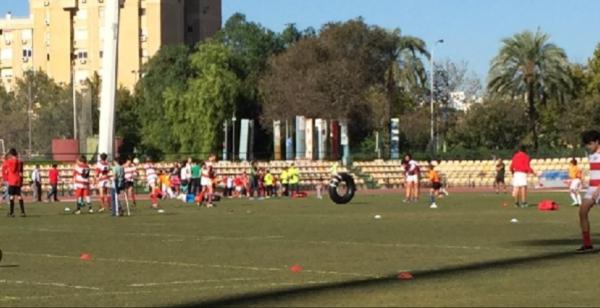 Gran sábado de Rugby en San Pablo